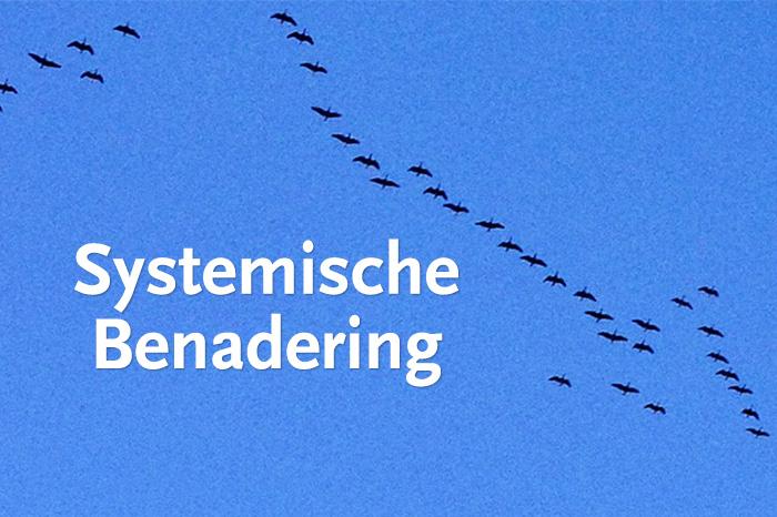 Systemische Benadering