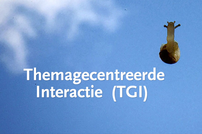 Themagecentreerde Interactie (TGI)
