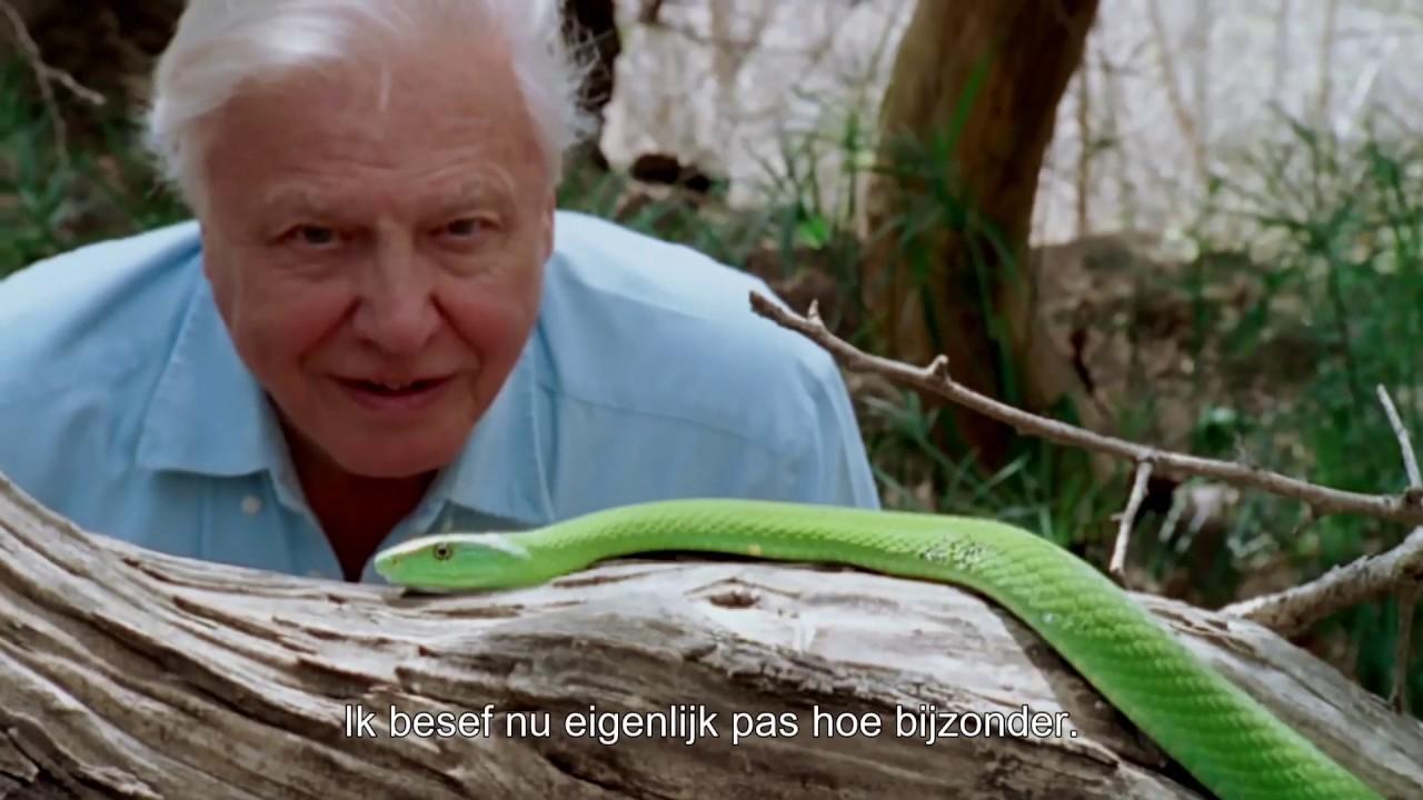 A Life On Our Planet Van David Attenborough